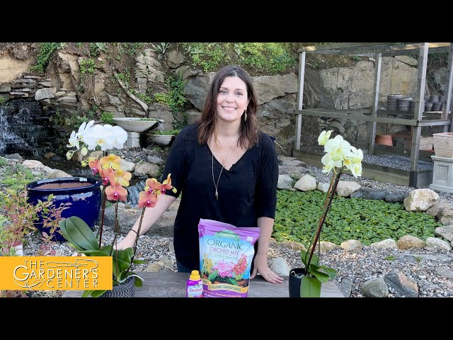 9/10/2021 Orchid Care with Jaime