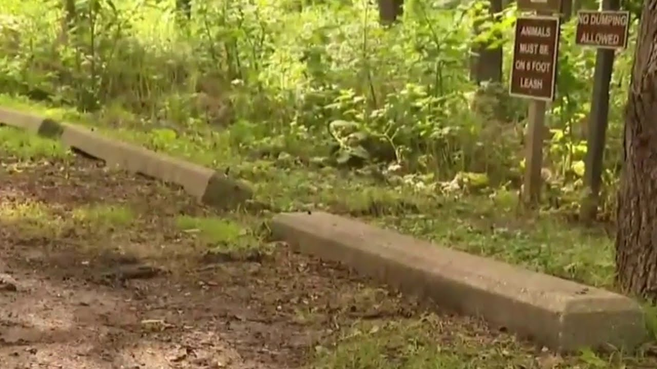 Burned body found near park in White Lake Township