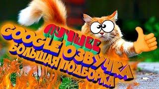 СМЕШНАЯ GOOGLE ОЗВУЧКА / БОЛЬШАЯ ПОДБОРКА МЕГА ВЫПУСК / ЛУЧШЕЕ / ЛУЧШИЕ ПРИКОЛЫ 2019