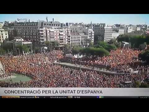 Madrid unity protests