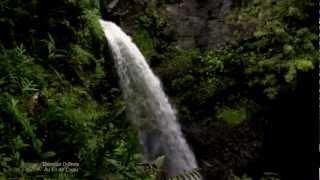 ✿❤✿ Relaxing, soothing music : Damien DUBOIS - Au Fil de L