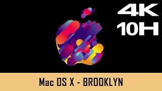 Mac OS X Screensaver - BROOKLYN  - 10 Hours (4K) RELEASED 2019