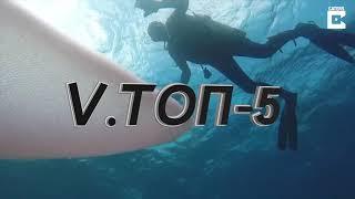 #VТоп5 Морское чудовище / Необычное предложение руки и сердца / Виртуальный телеведущий