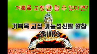 거북목 목통증 척추교정에 좋은 발편한 기능성 건강신발 …