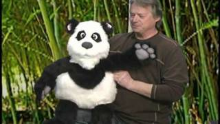 Panda Puppet with Blinkers by Axtell Expressions