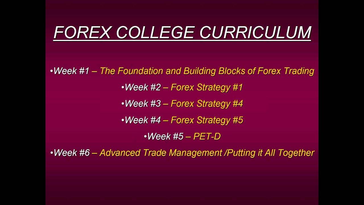 College student forex trader форекс правила управление капиталом