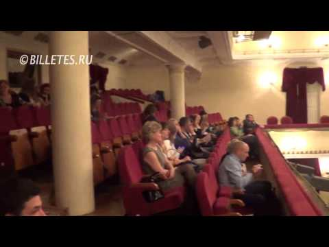 Театр им. Пушкина, зрительный зал