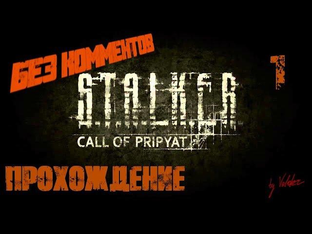 S.T.A.L.K.E.R. (Зов Припяти) (видео)