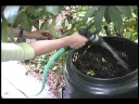 Composting At Home: Two Easy Methods mp4,hd,3gp,mp3 free download Composting At Home: Two Easy Methods