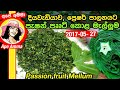 Passionfruit leaves in grated coconut for high blood pressure by Apé Amma පැෂන් පෲට් කොළ මැල්ලුම්