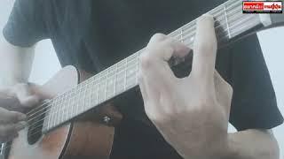 ดาเม ดาเน้ (bakamitai) fingerstyle guitar - MOUTHSKILL