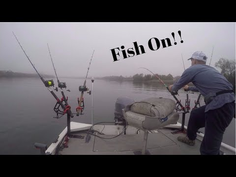 Fishing For Catfish In A River: Catfishing Tips - Bait, Rigs, And Tackle