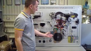 видео Система управления двигателем