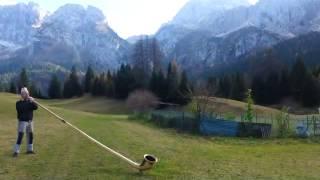 Video alpen horn( Zinal,Switzerland )(2840m) 18.02.2017 download MP3, 3GP, MP4, WEBM, AVI, FLV Februari 2018