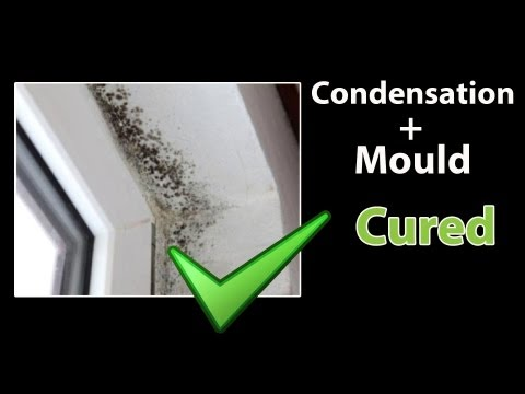 EASY - How to STOP CONDENSATION - Get Rid of Black Mold and Clean Mould