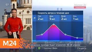 """""""Утро"""": солнечная погода ожидается в столичном регионе 25 апреля - Москва 24"""
