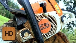 What Chainsaw Is Right For You?