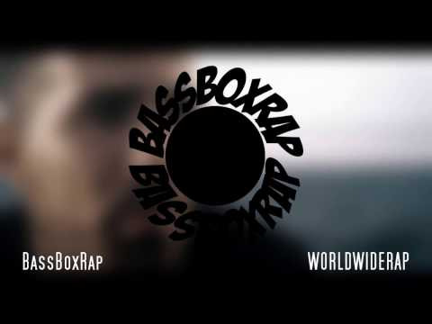 BUSHIDO feat. GZUZ - Black Friday (Remix)