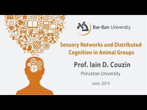 Sensory Networks and Distributed Cognition in Animal Groups - Prof. Iain D. Couzin
