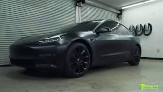 Tesla Model 3: The World