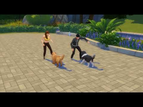 The Sims 4 - Cats and Dogs - Playing with Chow Chow