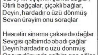Bəhram Nəsibov - Deyin hardadır (Şahnaz təsnifi)