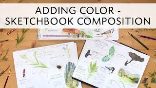 Adding color to sketchbook pages - Sketchbook Composition