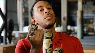 Behind the Scenes of MTV's 'Fear Factor' Reboot with Host Ludacris