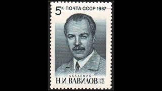 воспоминания о Вавилове и Ленинградской блокаде