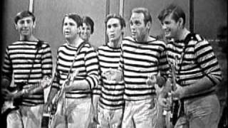 Watch Beach Boys When I Grow Up to Be A Man video