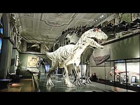 Dinosaur robot - Wien Naturhistorisches Museum (Vienna Natural History Museum)