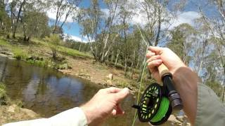 Fly FIshing in NSW highlands