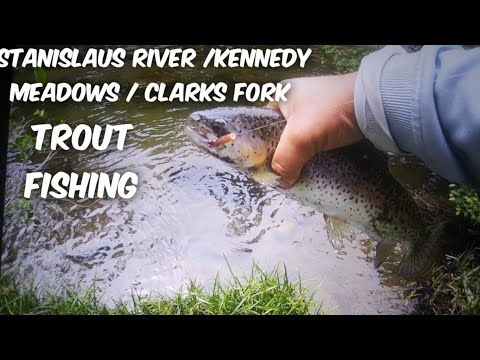 Stanislaus River Trout Fishing.(Kennedy Meadows / Clarks Fork)