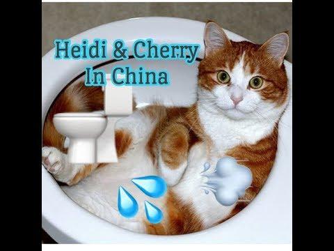 Heidi & Cherry In China - Children's Bedtime Story/Meditation