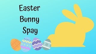Spaying an Easter Bunny