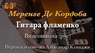 Испанская гитара фламенко. Меренге Де Кордоба. Видео школа (рус)