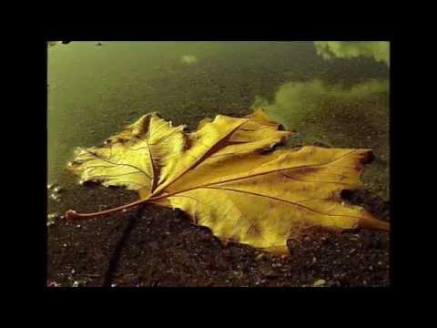 Mithat Körler  ( Sonbaharda Sevmiştim)