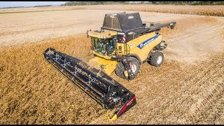 Geringhoff TruFlex in Action | Soybean Harvest 2018 | New Holland CR9090