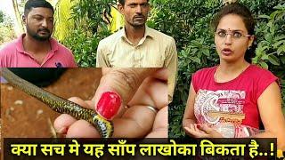 || कहते है इसे दो मुह है || Indian shield tail snake information ||