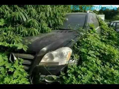 Yahya Jammeh's Luxury Cars Hidden Around The Cassamance Border
