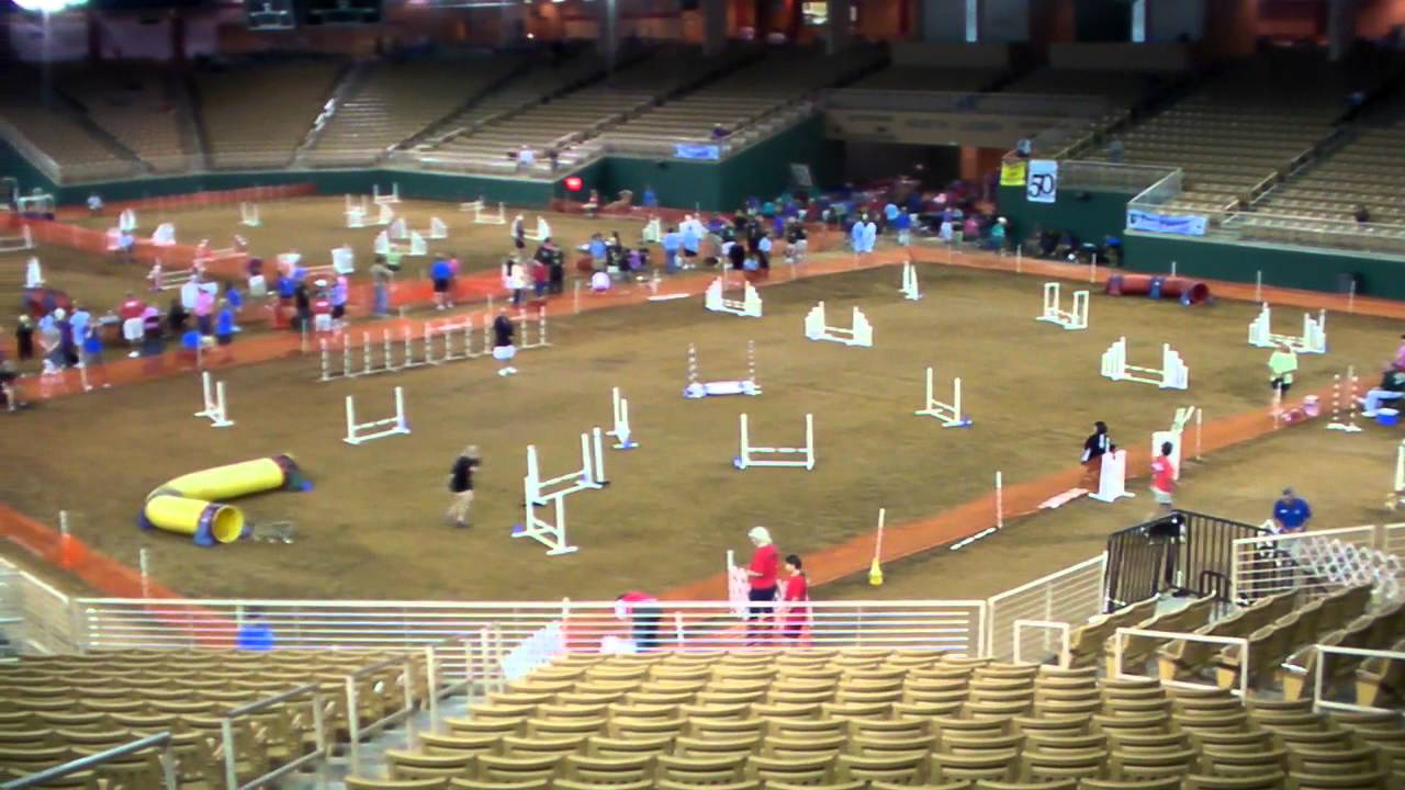 Dacof 2011 Silver Spurs Arena Youtube