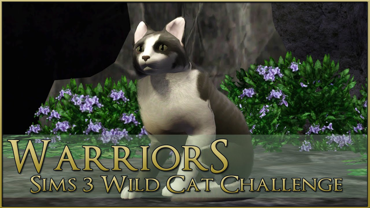 warrior cats spiele