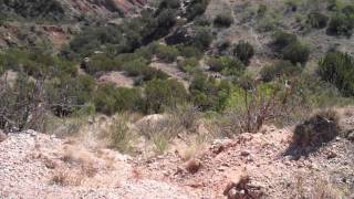 Palo Duro Canyon:  the Grand Canyon of Texas