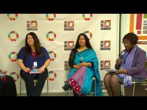 Indigenous Women Human Rights Defenders