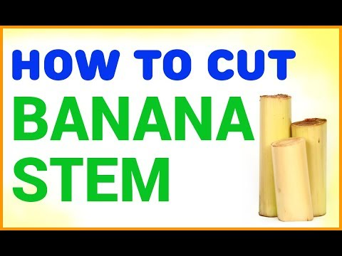 How To Cut And Clean Banana Stem For Cooking / Minakshi Kitchen