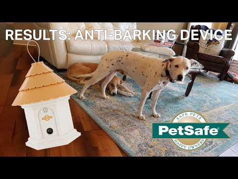 anti-dog-barking-device-results-|-petsafe-elite-outdoor-bark-control-device
