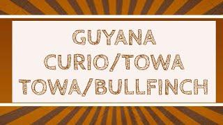 Guyana curio /towa  Towa