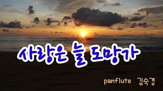 [팬플룻panflute] 사랑은 늘 도망가(이문세.로이킴)-소울의 오카랑 팬이랑(김숙경)
