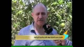 فيديو.. مهندس مصري يخترع مادة لتحلية مياه الآبار والتربة الزراعية