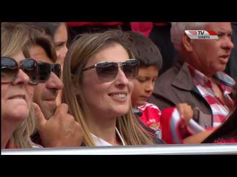 Benfica x V  Guimarães   Primeira Liga Final Direto BenficaTV